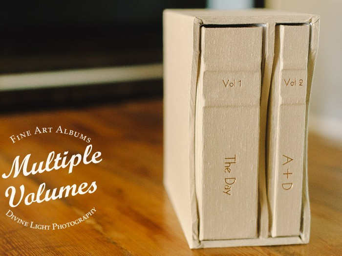Multi-Volume Sets | Custom Coffee Table Wedding Albums